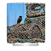 Starling On Lobster Pots Shower Curtain