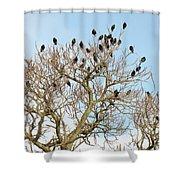 Starlings For Leaves - Sturnus Vulgaris Shower Curtain