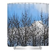Starlings In The Cottonwoods Shower Curtain