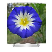 Starry Blue Enchantment Shower Curtain