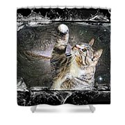 Starry Night Kitty Style Splash Shower Curtain