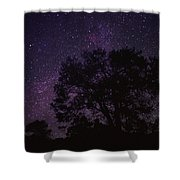 Starry Sky With Silhouetted Oak Tree Shower Curtain