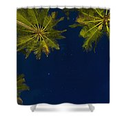 Stars At Night With Palm Tree Thalpe Shower Curtain
