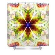 Starseed Rainbow Shower Curtain