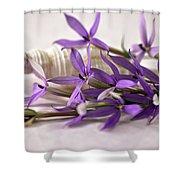 Starshine Laurentia Flowers And White Shell Shower Curtain
