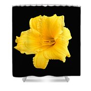 Starship Lily Shower Curtain