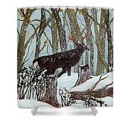 Startled Buck - White Tail Deer Shower Curtain