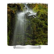 Starvation But Not Dehdration Shower Curtain