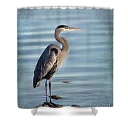 Stately-great Blue Heron Shower Curtain