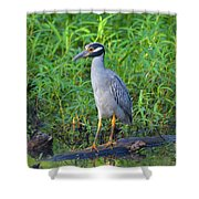Stately Heron Shower Curtain