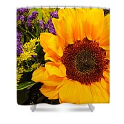 Statice And Sunflower Shower Curtain