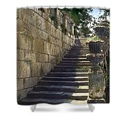 Statue And Stairs Shower Curtain