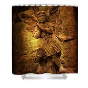 Statue Of Angel Shower Curtain by Amanda Elwell