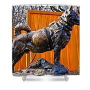 Statue Of Balto In Nyc Central Park Shower Curtain by Anthony Sacco