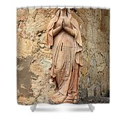 Statue Of Mary In Mission Garden Shower Curtain