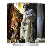 Statue Of St Stephen's Shower Curtain