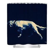 Steady Shower Curtain