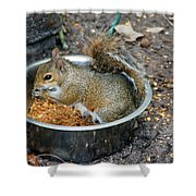 Stealing Food Shower Curtain