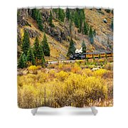 Steam Train 5 Shower Curtain