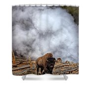 Steamed Bison Shower Curtain