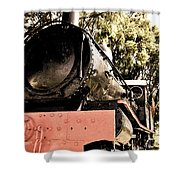 Steamer Shower Curtain