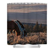 Steens Sundown Shower Curtain