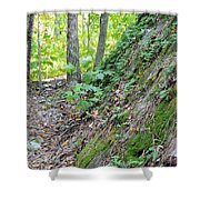 Steep Incline Around The Mountain Shower Curtain