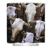 Steer Skulls  - New Mexico Shower Curtain