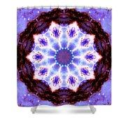 Stellar Spiral Eagle Nebula I Shower Curtain