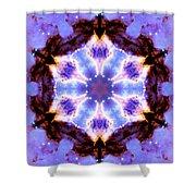 Stellar Spiral Eagle Nebula IIi Shower Curtain