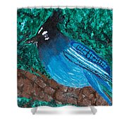 Stellar's Jay Shower Curtain by Lloyd Alexander