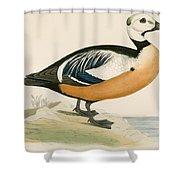 Stellers Western Duck Shower Curtain