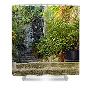 Step Avenue Shower Curtain
