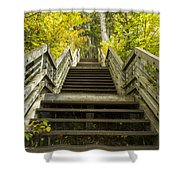 Step Trail In Woods 10 Shower Curtain