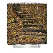 Step Trail In Woods 11 Shower Curtain