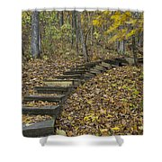 Step Trail In Woods 12 Shower Curtain