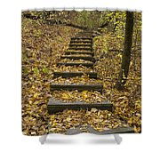 Step Trail In Woods 14 Shower Curtain
