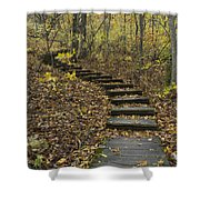 Step Trail In Woods 15 Shower Curtain