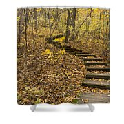 Step Trail In Woods 16 Shower Curtain