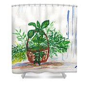 Stephanie's Basket Shower Curtain