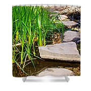 Stepping Stones Across Creek On Lower Palm Canyon Trail In Indian Canyons Near Palm Springs-ca Shower Curtain