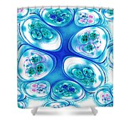 Stepping Stones Shower Curtain by Anastasiya Malakhova