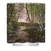 Stepping Stones On Cannock Chase Shower Curtain