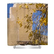 Steps And Fall Jerome Shower Curtain