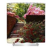 Steps To Azalea Fairyland Shower Curtain