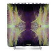 Stereoscopic Shower Curtain