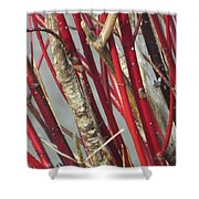 Sterling Stems Shower Curtain