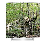 Sticks And Stones Along The Way Shower Curtain
