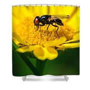 Sticky Fingers Shower Curtain
