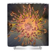 Stigma - Photopower 1072 Shower Curtain